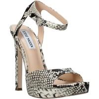 Čevlji  Ženske Sandali & Odprti čevlji Steve Madden SMSLUV-GLDSNK Zlato