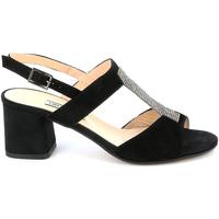 Čevlji  Ženske Sandali & Odprti čevlji Grunland SA2516 Črna