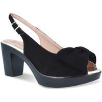 Čevlji  Ženske Sandali & Odprti čevlji Pitillos 2901 Črna