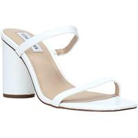 Čevlji  Ženske Sandali & Odprti čevlji Steve Madden SMSKATO-WHTC Biely