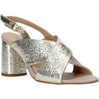 Čevlji  Ženske Sandali & Odprti čevlji IgI&CO 5192211 Drugi