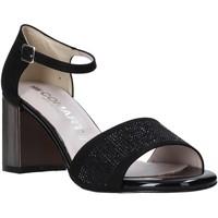 Čevlji  Ženske Sandali & Odprti čevlji Comart 823368 Črna