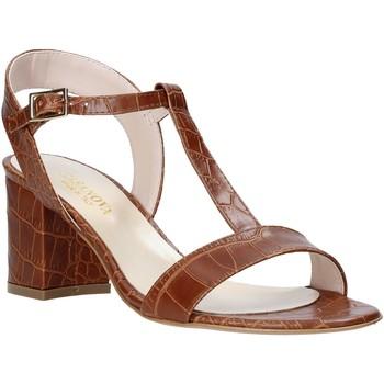 Čevlji  Ženske Sandali & Odprti čevlji Casanova LING Rjav