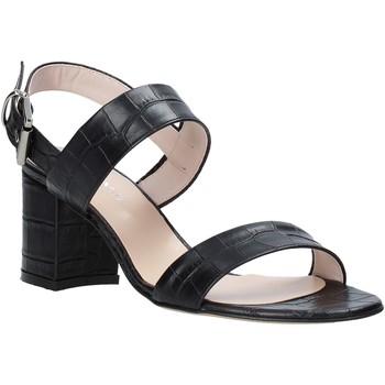 Čevlji  Ženske Sandali & Odprti čevlji Casanova LIVIA Črna