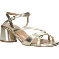 Čevlji  Ženske Sandali & Odprti čevlji Grace Shoes 123010 Drugi