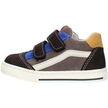 Čevlji  Dečki Nizke superge Balocchi 602211 Multicolored