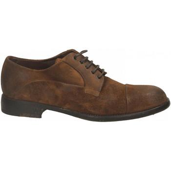 Čevlji  Moški Čevlji Derby Brecos CAMOSCIO sigaro