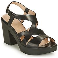 Čevlji  Ženske Sandali & Odprti čevlji Wonders PAROTI Črna