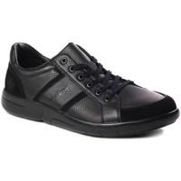 Čevlji  Moški Nizke superge Rieker B271200 Črna