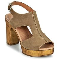 Čevlji  Ženske Sandali & Odprti čevlji Myma POULISSA Taupe
