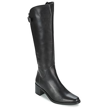 Čevlji  Ženske Mestni škornji    Betty London SALINA Črna