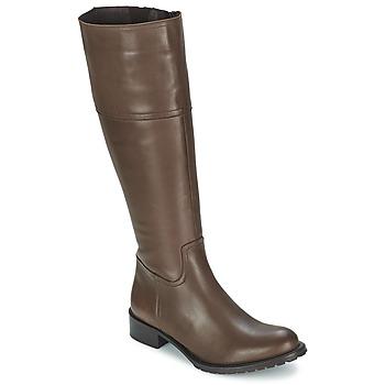 Čevlji  Ženske Mestni škornji    Betty London CAVAK Kostanjeva
