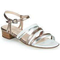 Čevlji  Ženske Sandali & Odprti čevlji Peter Kaiser PATIA Bronze / Bela