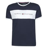 Oblačila Moški Majice s kratkimi rokavi Tommy Hilfiger CN SS TEE LOGO FLAG Bela