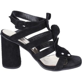 Čevlji  Ženske Sandali & Odprti čevlji Sergio Cimadamore Sandali Camoscio Nero