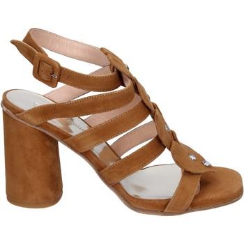 Čevlji  Ženske Sandali & Odprti čevlji Sergio Cimadamore Sandali Camoscio Marrone