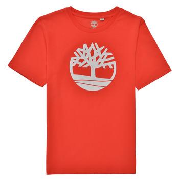 Oblačila Dečki Majice s kratkimi rokavi Timberland LOLLA Rdeča