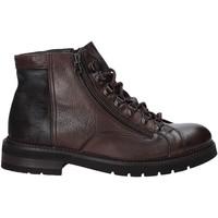 Čevlji  Moški Polškornji Exton 28 Rjav
