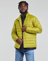 Oblačila Moški Puhovke Levi's OASIS Zelena