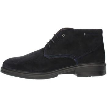 Čevlji  Moški Čevlji Derby Luisetti 30208SE Blue