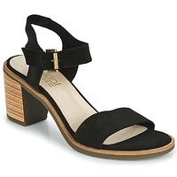 Čevlji  Ženske Sandali & Odprti čevlji Casual Attitude CAILLE Črna