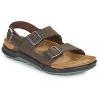 Čevlji  Moški Sandali & Odprti čevlji Birkenstock MILANO CT Kostanjeva
