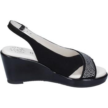 Čevlji  Ženske Sandali & Odprti čevlji Adriana Del Nista BJ04 Črna