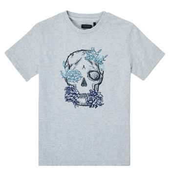 Oblačila Dečki Majice s kratkimi rokavi Ikks XS10243-21-C Siva