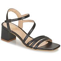 Čevlji  Ženske Sandali & Odprti čevlji Betty London OCHANTE Črna