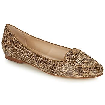 Čevlji  Ženske Balerinke Betty London OVINOU Taupe