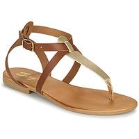 Čevlji  Ženske Sandali & Odprti čevlji Betty London ORIOUL Kamel / Pozlačena