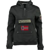 Oblačila Dečki Puloverji Geographical Norway GYMCLASS Siva