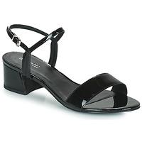 Čevlji  Ženske Sandali & Odprti čevlji Minelli VERINA Črna
