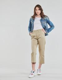 Oblačila Ženske Hlače Chino / Carrot Tommy Jeans TJW HIGH RISE STRAIGHT Bež