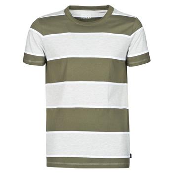 Oblačila Moški Majice s kratkimi rokavi Esprit T-SHIRTS Kaki
