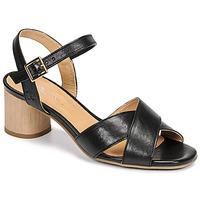 Čevlji  Ženske Sandali & Odprti čevlji Dream in Green ODAINE Črna
