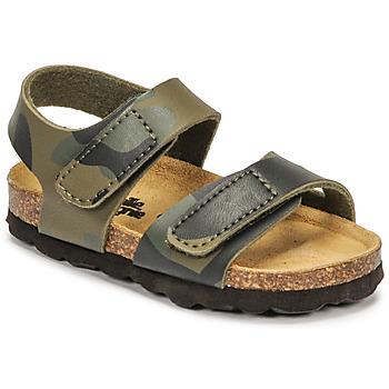 Čevlji  Dečki Sandali & Odprti čevlji Citrouille et Compagnie BELLI JOE Maskovací