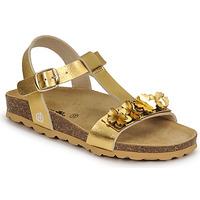Čevlji  Deklice Sandali & Odprti čevlji Citrouille et Compagnie KAPIBA Pozlačena