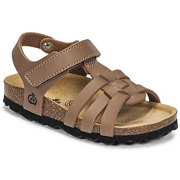 Čevlji  Dečki Sandali & Odprti čevlji Citrouille et Compagnie JANISOL Kostanjeva / Taupe