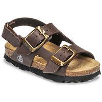 Čevlji  Dečki Sandali & Odprti čevlji Citrouille et Compagnie KELATU Rjava