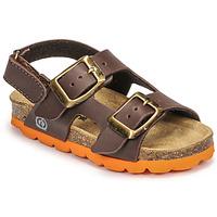 Čevlji  Dečki Sandali & Odprti čevlji Citrouille et Compagnie KELATU Kostanjeva
