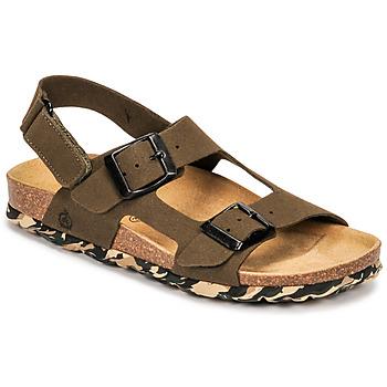 Čevlji  Dečki Sandali & Odprti čevlji Citrouille et Compagnie KELATU Kaki