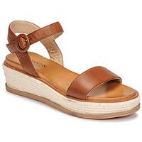Čevlji  Ženske Sandali & Odprti čevlji JB Martin CAT Nuts