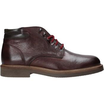 Čevlji  Moški Polškornji Exton 852 Drugi