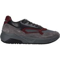 Čevlji  Moški Nizke superge IgI&CO 6142522 Siva