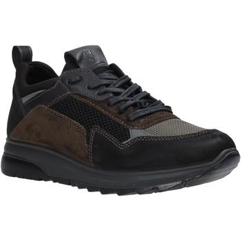 Čevlji  Moški Nizke superge IgI&CO 6139000 Črna