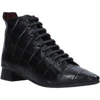 Čevlji  Ženske Polškornji Bueno Shoes 20WR3002 Črna