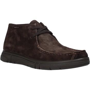 Čevlji  Moški Polškornji Enval 6220822 Rjav