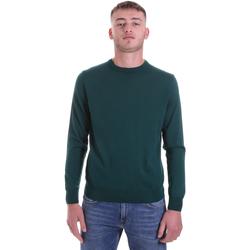 Oblačila Moški Puloverji Navigare NV11006 30 Zelena