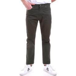 Oblačila Moški Hlače Chino / Carrot Navigare NV53090 Zelena